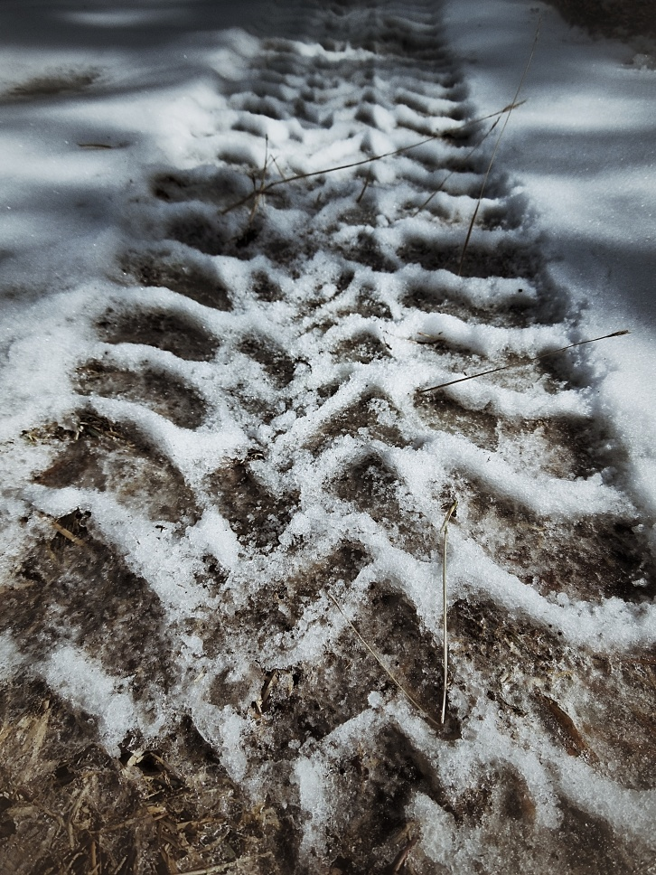 Ice tread